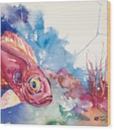Big Eye Squirrelfish Wood Print