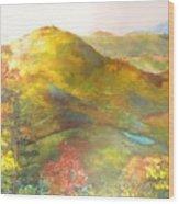 Big Hill Vista Wood Print