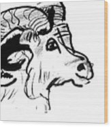 Big Horn Sheep  Sketch Wood Print