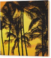 Big Island, View Wood Print