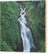 Big Island Watefall Wood Print