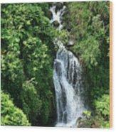 Big Island Waterfall Wood Print