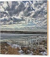 Big Marsh Spring Thaw 2 Wood Print