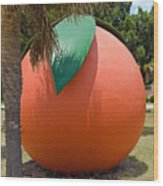 Big Orange At Melbourne On The East Coast Of Florida Wood Print