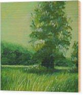 Big Otter Creek - High Noon Wood Print