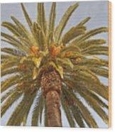 Big Palm Wood Print