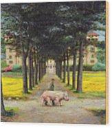 Big Pig - Pistoia -tuscany Wood Print