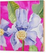 Big Pink  Flowers Wood Print