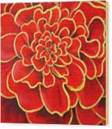 Big Red Flower Wood Print