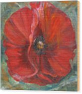 Big Red Poppy Wood Print