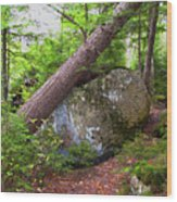 Big Rock Wood Print
