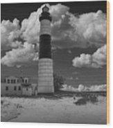 Big Sable Lighthouse Under Cloudy Skies Wood Print