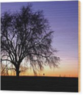Big Sky - New Mexico Wood Print