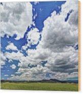 Big Sky Wood Print