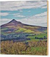 Big Sugarloaf Mountain Wood Print