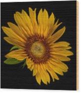 Big Sunflower Wood Print