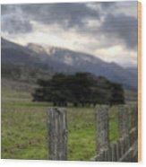 Big Sur Fence Line Wood Print