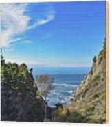 Big Sur Partington Cove Wood Print