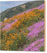 Big Sur Spring Wood Print