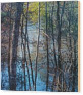 Big Thicket Water Reflection Wood Print