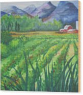 Big Valley Farm Wood Print