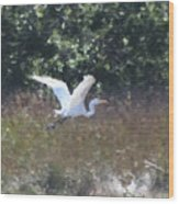 Big White Bird Flying Away Wood Print