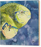 Bignose Unicornfish Wood Print