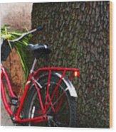 Bike Resting Wood Print