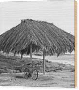 Bike Sale At The Windnasea Shack In La Jolla. Wood Print