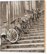 Bike Stairs Zurich Wood Print
