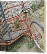 Bike To The Beach Wood Print