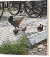 Biker Chicks Wood Print