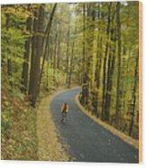 Biker On Road Amidst Fall Foliage Wood Print