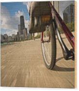 Biking Chicagos Lakefront Wood Print