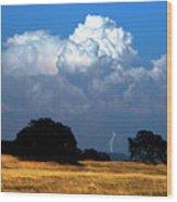 Billowing Thunderhead Wood Print by Frank Wilson