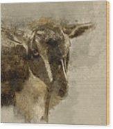 Billy Wood Print