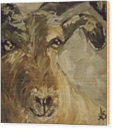 Billy Goat Gruff Wood Print