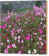 Biltmore Garden Wood Print