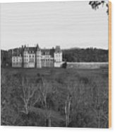 Biltmore Mansion Wood Print by Michael Tesar