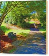 Biltmore Mansion Walking Path Wood Print