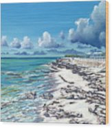 Bimini Breeze Wood Print by Danielle  Perry