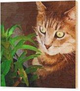 Bink Wood Print