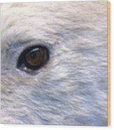 Bipolar Bear Wood Print
