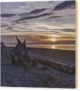 Birch Bay Evening Wood Print