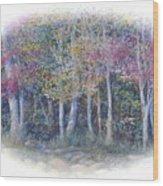 Birch Tree Gathering Wood Print