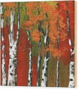 Birch Trees In An Autumn Forest Wood Print