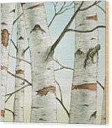 Birch Trees In Late Autumn Wood Print