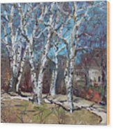 Birch Trees Next Door Wood Print
