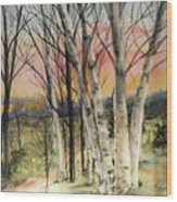 Birch Trees On Canvas Wood Print