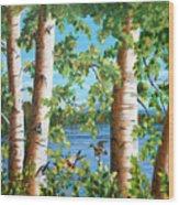 Birches Along The Androscoggin River Wood Print